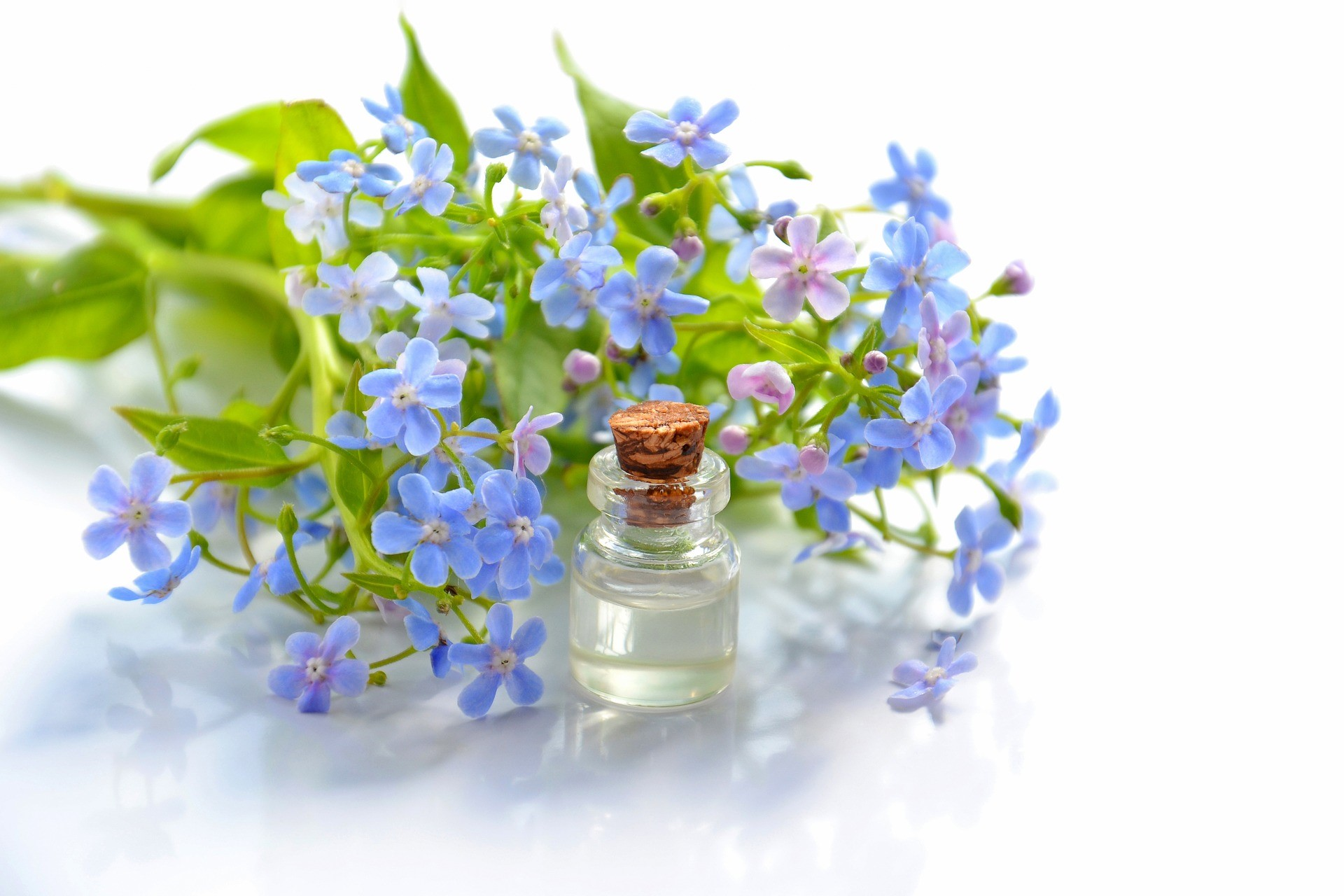 Essential Oil Lies What You Need To Know